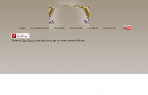 Flashwebsite - tja einfach Fail