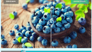 Shortpixel Image Optimization für Wordpress